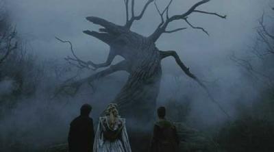 De aniversario (II): La analogía del árbol y el cineasta caducifolio